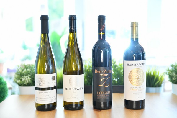 Wines From Israel – The Best Grapes